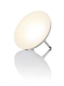 LT 500 | Daylight lamp
